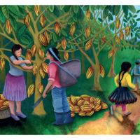 LUNA ET PEDRO, la récolte du cacao (KAMISHIBAÏ)